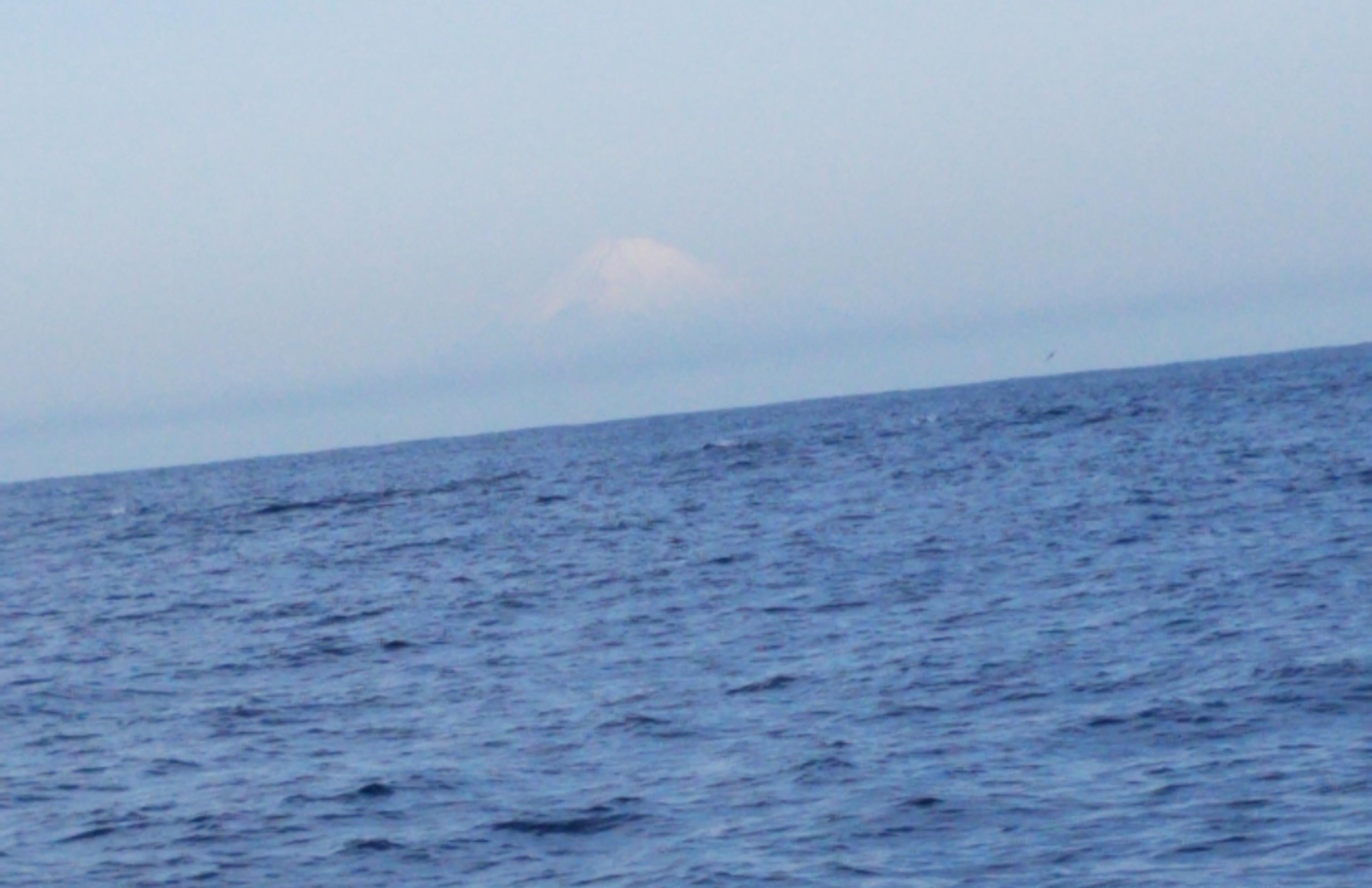 釣り船から富士山とイルカ画像